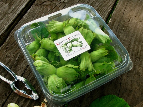 Farnell Farm sell Kentish Cobnuts fresh when ripe between late August and the end of October